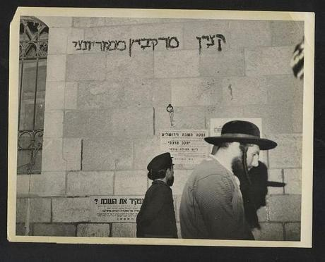 My collection of Rabbi picture