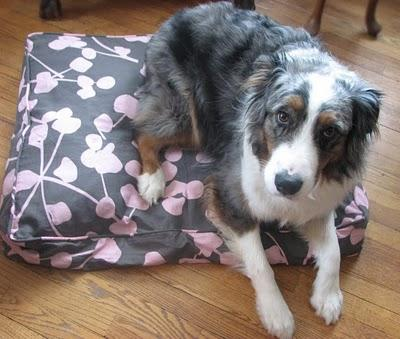 A stylish - and eco-friendly substitue for the typical eye-sore dog bed