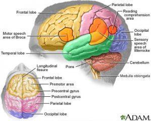 Aphasia: A Frightening Symptom
