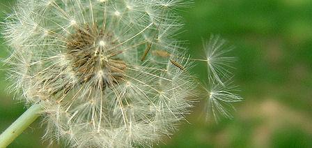 10 Highly Unusual Allergies