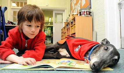 The Dogs Who Listen To Children Reading