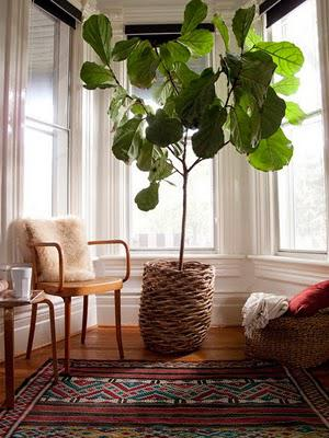 Spring is on it's way! 10 great tips to freshen up the place at little to no cost