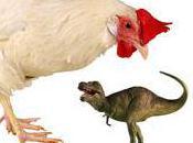 Chicken Tyrannosaurus Rex's Closes Living Relative