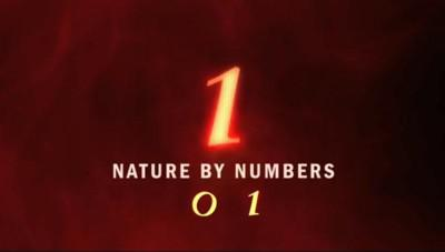 """Nature by Number"" and Other Movies"