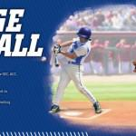CSS_College_Baseball_750px