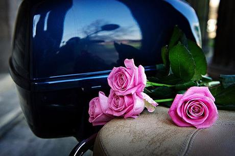 Roses on a Vespa seat