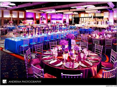 Cinal and Taju's Fabulous Reception Decor