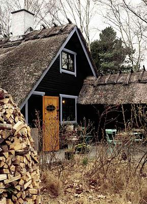 A cabin retreat in Denmark - to rough for you or just right?