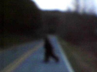 Bigfoot Captured?