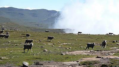A hike to Mafadi, the highest peak in South Africa - February 2011