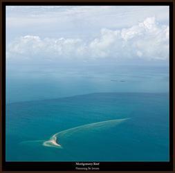tn-montgomery-reef-sand