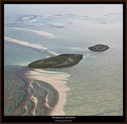 tn-montgomery-reef