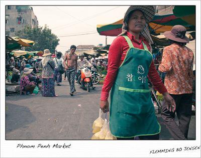 cam-polaroid-market