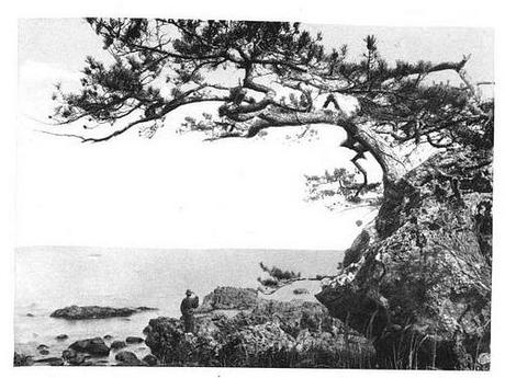 Matsushima from Japan and Her People 1902