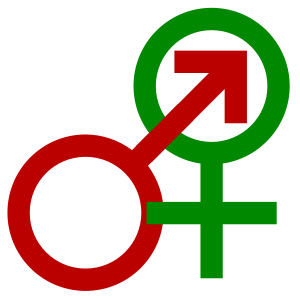 Sexuality and gender identity-based cultures