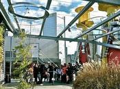 CH2's Rooftop Garden: Success Failure?