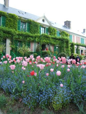 The Flowering Calendar of Claude Monet's Garden