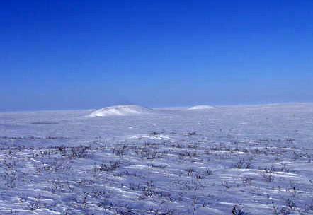 North Pole 2011: Barneo Station Ready To Go