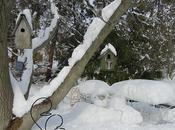Visit Long Island Snow City