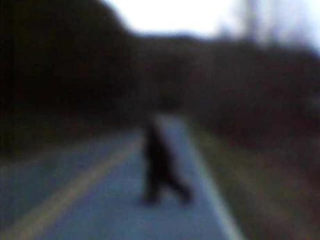 Bigfoot, Basketball, and North Carolina