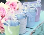 SET of 12 Spring Summer You Pick The Color Pink Blue Green Ivory Favor Tins Candy Bar Pen Holder Outdoor Vintage Circus Shabby Chic Wedding Decorations