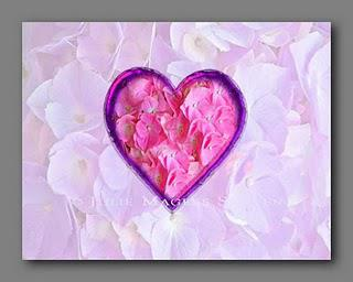 Valentine note card of lavender hydrangea blossoms and a pink heart of hydrangea blossoms.