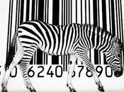 Barcode Scanner Zebras