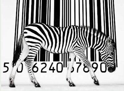 Barcode Scanner For Zebras