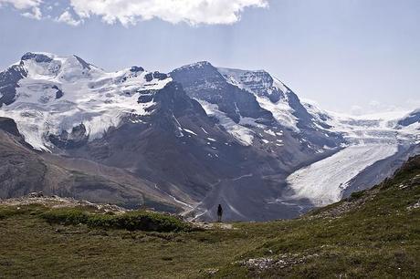 Canadian adventure - Columbia Ice Fields