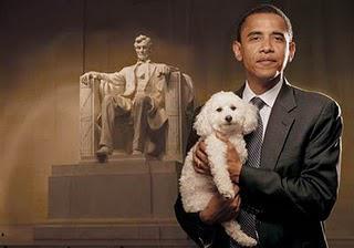 Dear Mr. President...
