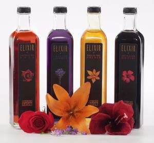 Lounging gourmet elixirs with flowers