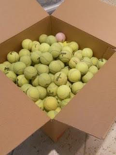 Rebounces Recycles Tennis Balls