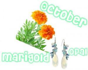 october 300x239Flowers and Birthstones Galore