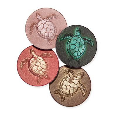 020311 Sea Turtle Palette 400 Earth Day 2011  Beautify Your Face and the Planet