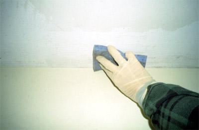 Controlling Mold in Your Home