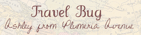 travel bug guest post: mccloud.