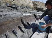 2,000-Year-Old Roman Ship Unearthed