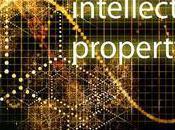 Social Media Accounts Intellectual Property