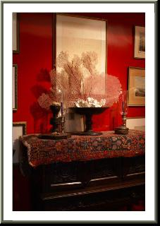 Friday Feature with Van Collier Design