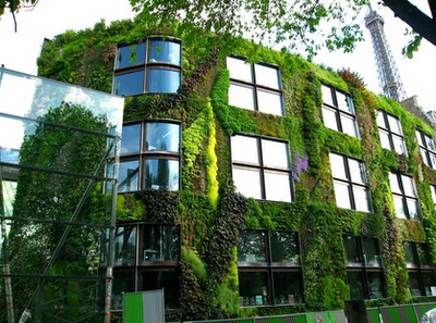 The Vertical Gardens of Patrick Blanc