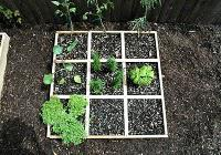 A Billion Acts of Green ... with Square Foot Salad Gardens