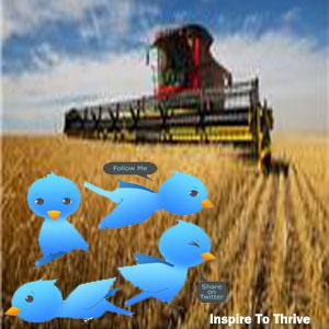 Do You Have Twitter Seeds?