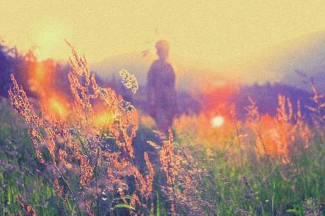 ephemeral meadows