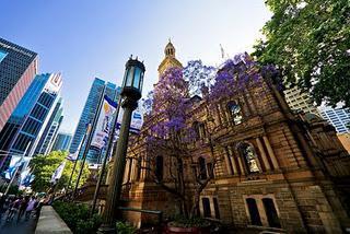Sydney's telltale signs of summer