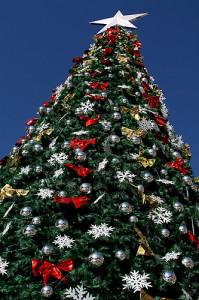christmasTree 199x300 Christmas Trees: Real or Fake, What's Better for the Environment?