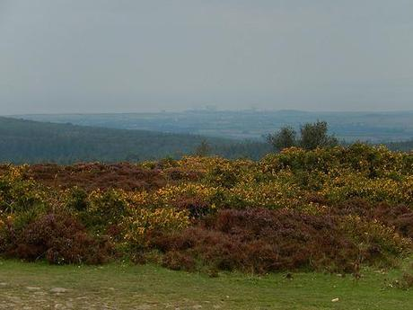 Quandry on the Quantocks (Part 2)