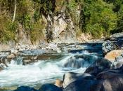 Postcard: Silky Waters Chiriqui Mali Panama