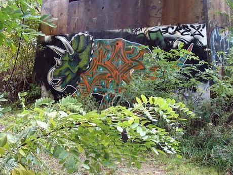 tritops-from-rear_872
