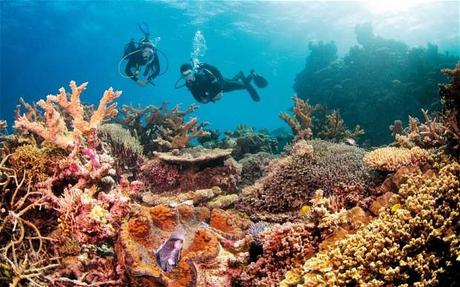 Great Barrier Reef Marine Park Australia