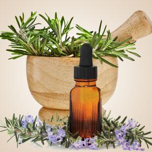 Rosemary Fragrance